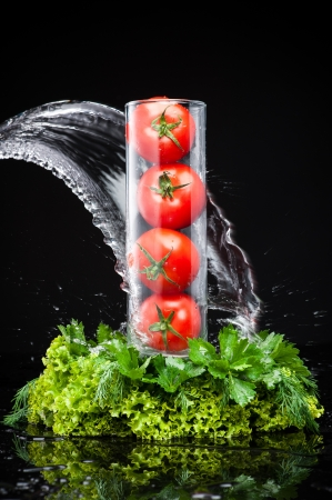 four tomatoes in a glass vase standing under the spray of water on the fresh green photo