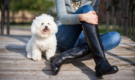 weibliche Beine in langen schwarzen Lederstiefeln sitzen an Holzbr�cke in der N�he von kleinen Hund