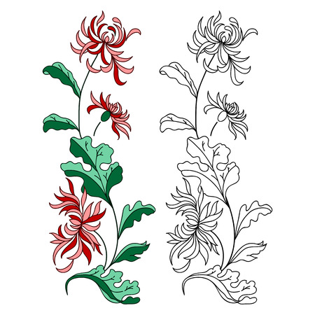Lily flower isolated over white. Vector illustration. Illustration