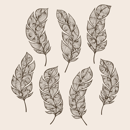 swelled: Set of ethnic feathers vector Illustration