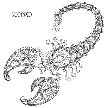 scorpio: Pattern for coloring book. Hand drawn line flowers art of zodiac Scorpio. Horoscope symbol for your use. For tattoo art, coloring books set.