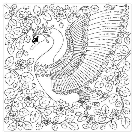 cisnes: Gráfico de la mano del cisne artística en flores para colorear páginas para adultos en arte del, zentangle estilo tribal, étnica ornamentales patrón tatuaje, logotipo, camiseta o grabados. ilustración vectorial animal.