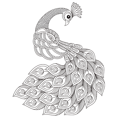 Peacock. Adult antistress coloring page. Black and white hand drawn doodle for coloring book. Isolated on white background Illustration