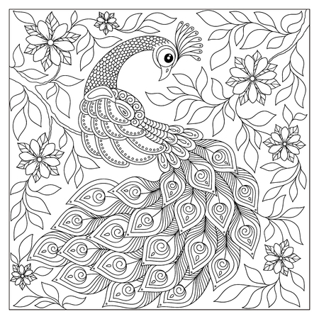 Hand getrokken Pauw voor anti-stress Kleurplaat met hoge details. illustratie in zentangle-stijl. Vector zwart-wit schets. Curly tale.