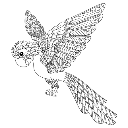anti stress: Hand drawn parrot. Isolated on transparent background. anti stress Coloring Page Vector monochrome sketch.