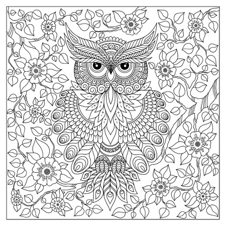 adults: Coloring book for adult and older children. Coloring page with cute owl and floral frame. Outline drawing in zentangle style