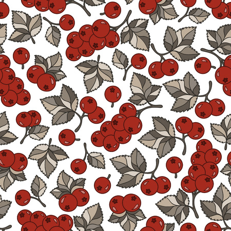 red currant: Fresh berries hand drawn seamless pattern. Doodle background  red berries. Sketch illustration vector Illustration