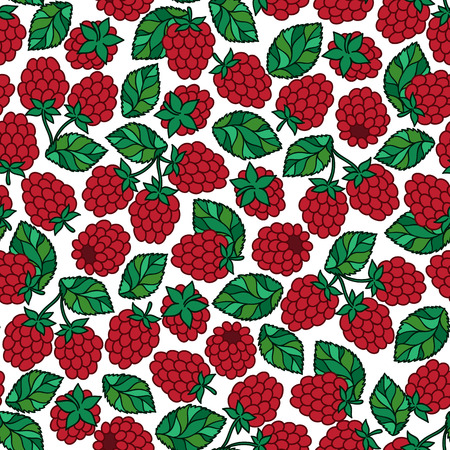 Seamless vector pattern with hand drawn raspberry on white background. Doodle hand drawn isolated raspberry pattern on white background Illustration