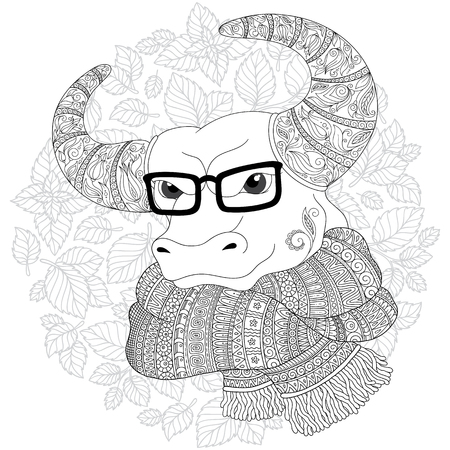 Hand drawn doodle outline cow head decorated with ornaments. Bull in a scarf and glasses. Freehand sketch for adult anti stress coloring book page with doodle