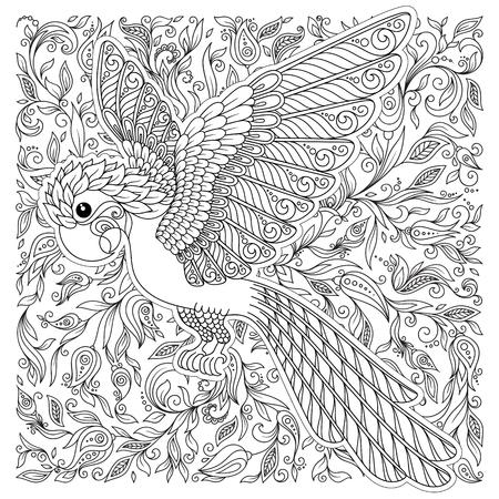 Pájaro exótico, flores fantásticas, ramas, hojas. Dibujo de líneas finas de contorno. Vector de fantasía estilizada silueta de loro de la selva de cacatúa. Estampado de camiseta. Página de libro para colorear para adultos y niños. Blanco negro