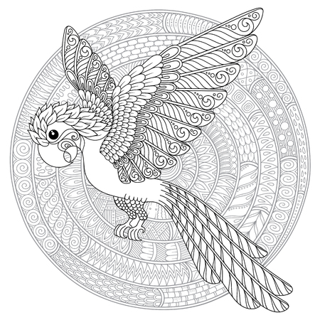 Stylized cartoon parrot . Hand drawn sketch for adult antistress coloring page, T-shirt emblem, logo or tattoo with floral design elements.