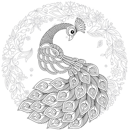 Peacock in zentangle style. Adult antistress colouring page.