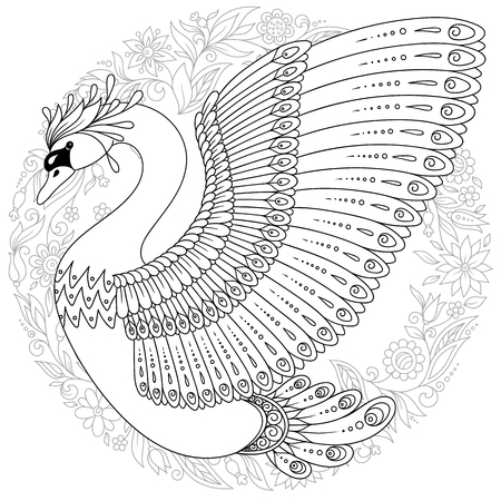 Hand drawing artistic Swan for adult colouring pages. Bird vector illustration.