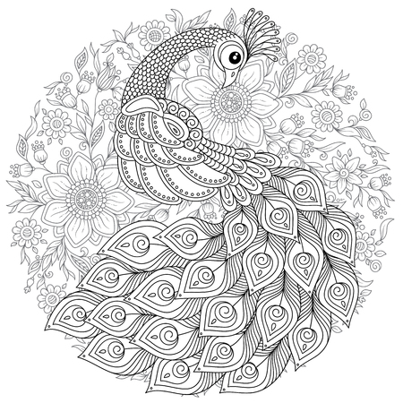 Peacock in style. Adult antistress coloring page. Black and white hand drawn doodle for coloring book 스톡 콘텐츠 - 105403064