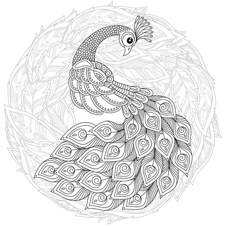 Peacock in style. Adult antistress coloring page. Black and white hand drawn doodle for coloring book