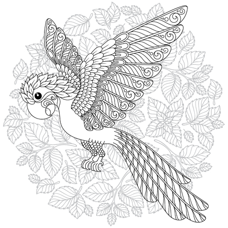 Exotic bird,fantastic flowers,branches, leaves. Contour thin line drawing. Vector fantasy stylized cockatoo jungle parrot silhouette.T-shirt print. Coloring book page for adults and children. Black White Stock Illustratie