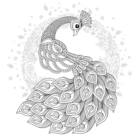 Hand drawn Peacock for anti stress Coloring Page with high details, isolated on white background, illustration in hand draw style. Vector monochrome sketch. Bird collection.  イラスト・ベクター素材