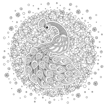 Peacock. Adult antistress coloring page. Black and white hand drawn doodle for coloring book