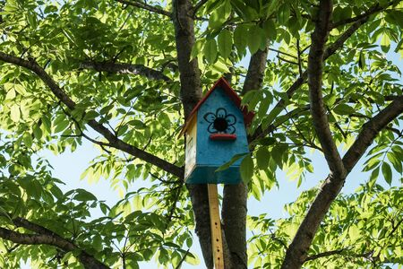 Wooden homemade birdhouse hanging on a tree. Banque d'images