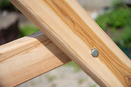 New shiny bolt in a wooden board. Stock Photo
