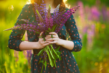A bouquet of lupines in the hands of a young adult girl in a green dress against the background of a flowering meadow. A picture without a face. Spring Summer. Beautiful morning, evening lighting.