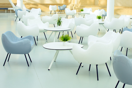 Bright modern interior of the cafe. White and gray armchairs, table, green flower in a pot.