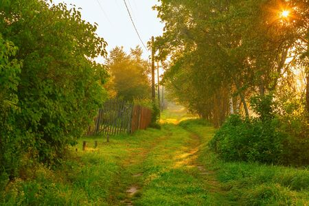 The Russian province. A small village. Rural street, dirt road, surrounded by greenery. Morning dawn sunlight