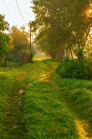 The Russian province. A small village. Rural street, dirt road, surrounded by greenery. Morning dawn sunlight. Vertical shot.