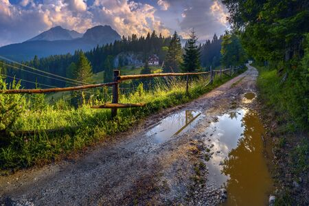 Nature after the rain. Landscape with the setting sun.  A dirt road with puddles, alpine meadows, forest, high mountains. Country house in the distance, hedge. Durmitor, Zabljak, Montenegro.
