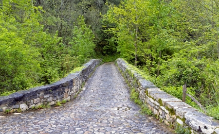 Roman bridge input, Poo de Cabrales, Old rustic village of Asturias, Spain photo