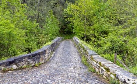 Roman bridge input, Poo de Cabrales, Old rustic village of Asturias, Spain photo