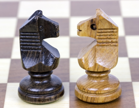 two chess horse faced, white and black photo