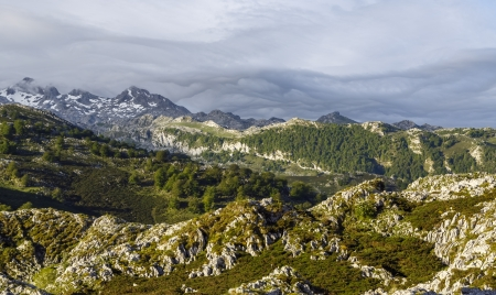 picos: Cantabrian Mountains in the park Peak of Europe, Asturias  Spain