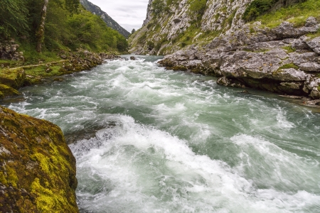 picos: Cares river  National Park Picos de Europa  Asturias Spain