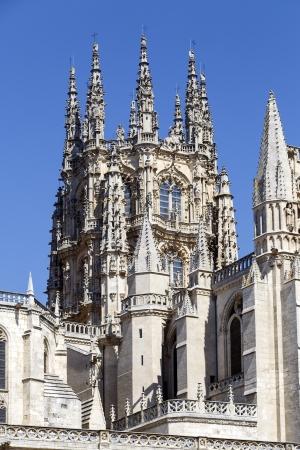 cara leon: B�veda g�tica de la cara este de la Catedral de Burgos, Burgos, Castilla y Le�n. Espa�a