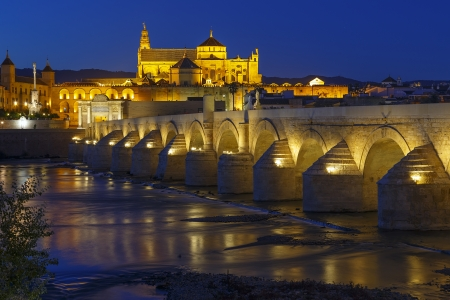 architectural heritage of the world: old roman bridge and tower Calahora at night, Cordoba, Andalusia, Spain