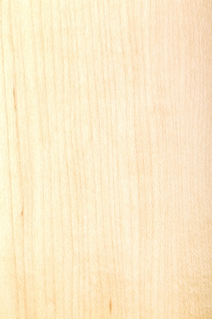 texture of natural wood, laminated wood varnished maple photo