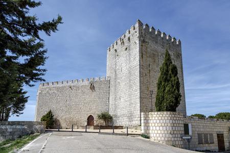 Castle Monzon de Campos in Palencia, Spain