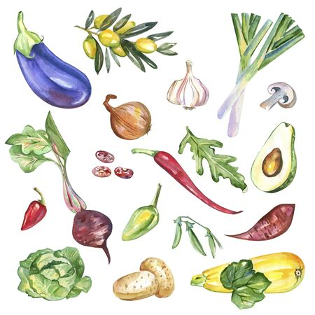 watercolor vegetables isolated on white background pattern