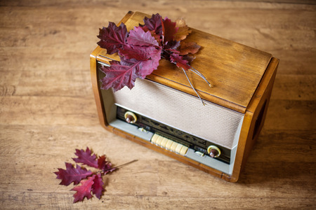 Pile of autumnal red oak leaves on a retro radio receiver
