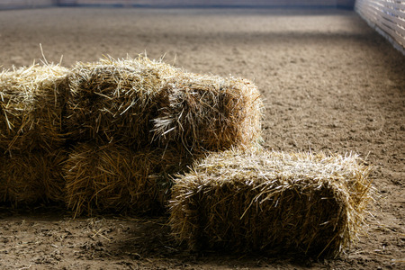 Bricks of fresh hay on a manege for horse dressage