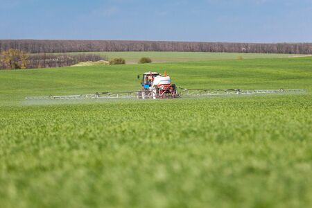 Application of fertilizer and fungicide on a wheat field in spring. Agriculture industry and farming concept Фото со стока