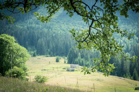 Landscape summer view of carpathian mountains near Verkhovyna, Ukraine. Travel destinations on Ukraine