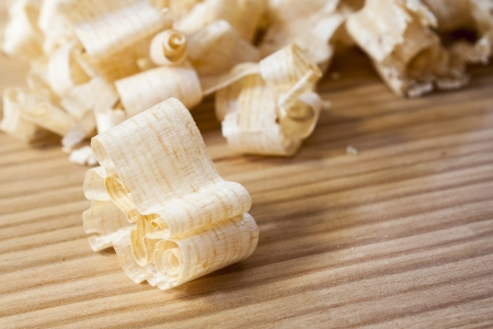 shavings: wooden shaving on pine wood background