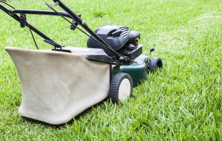 The Lawn mower in the yard photo