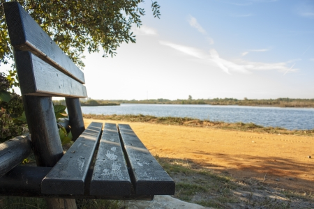 Wooden bench at the lake photo