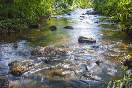 River Falls photo