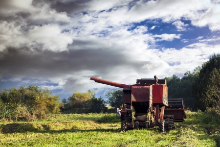 red combine harvester on stubble field with blue cloudy sky photo
