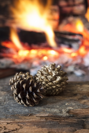 Fire in a fireplace with pine cones photo