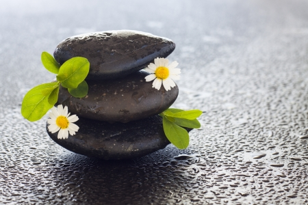 spa stones  and flowers on the black background photo